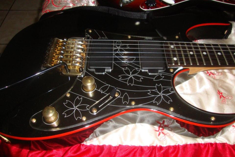 My Ibanez Rg08 Ltd Sakura Blast Theme - Japan Black